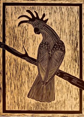 Nowra (Black Cockatoo)