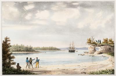 De La Baie Jervis, Nouvelle - Hollande (Cote Orientale)
