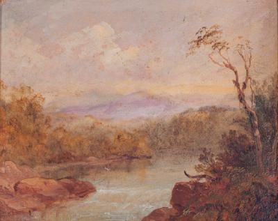 Illawarra Landscape
