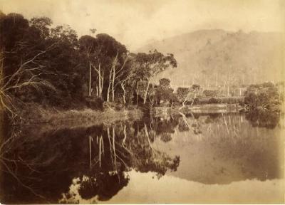 (Stanwell Park Lagoon)
