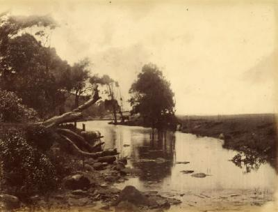 (Stanwell Park Creek)